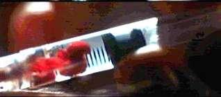 Blood Plumb fills syringe