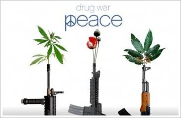 drug-war-peace-small